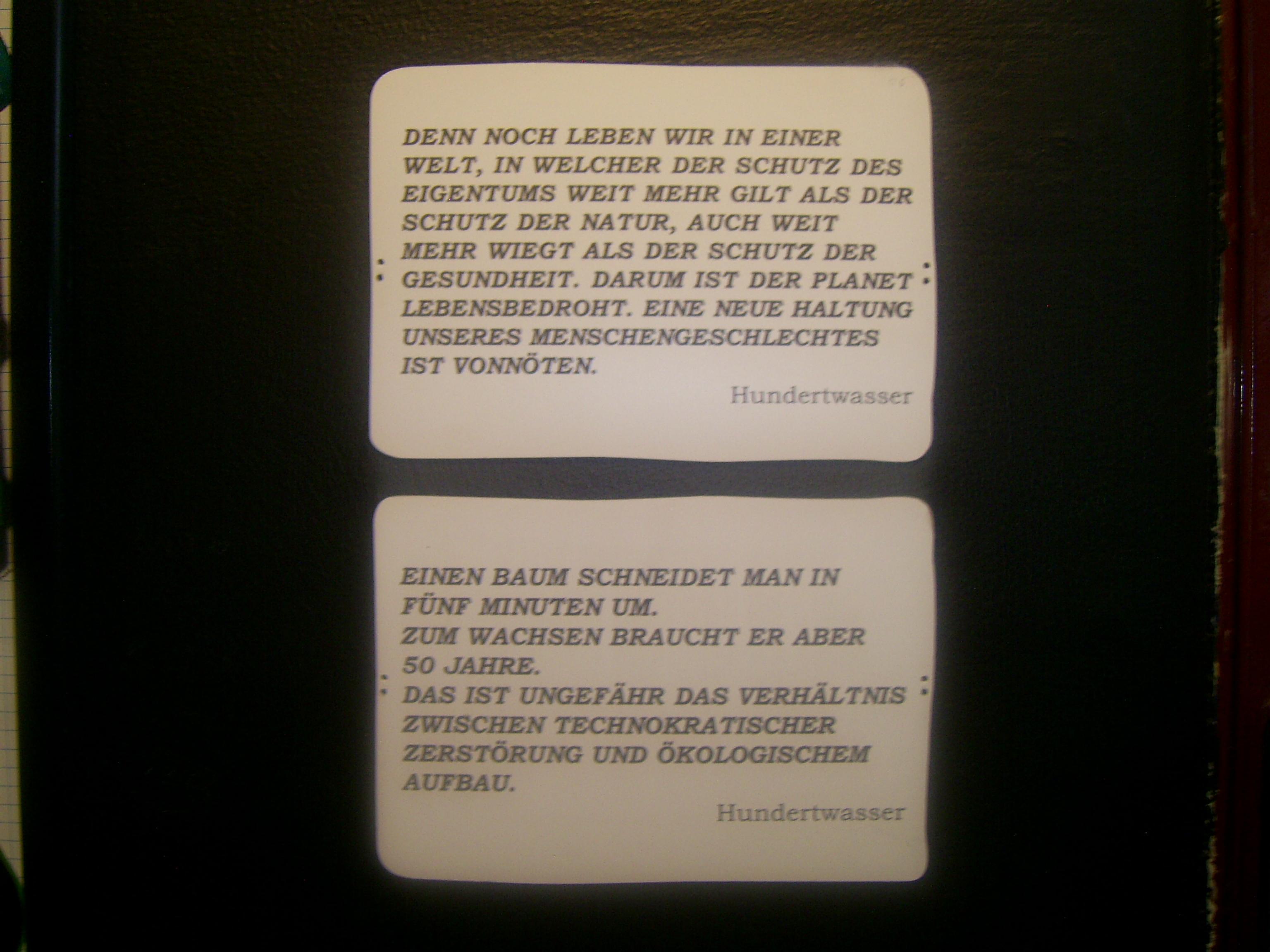 Friedensreich Hundertwasser – Ein Vordenker